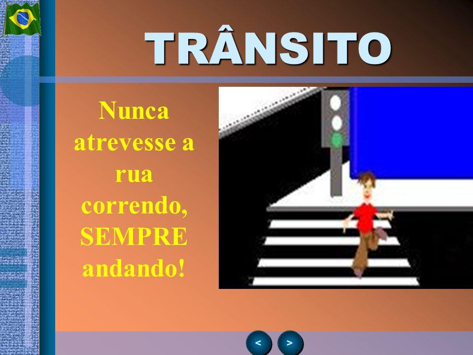 > > < <TRÂNSITO Descendo do ônibus, vá para a calçada. NUNCA atravesse por trás nem pela frente!