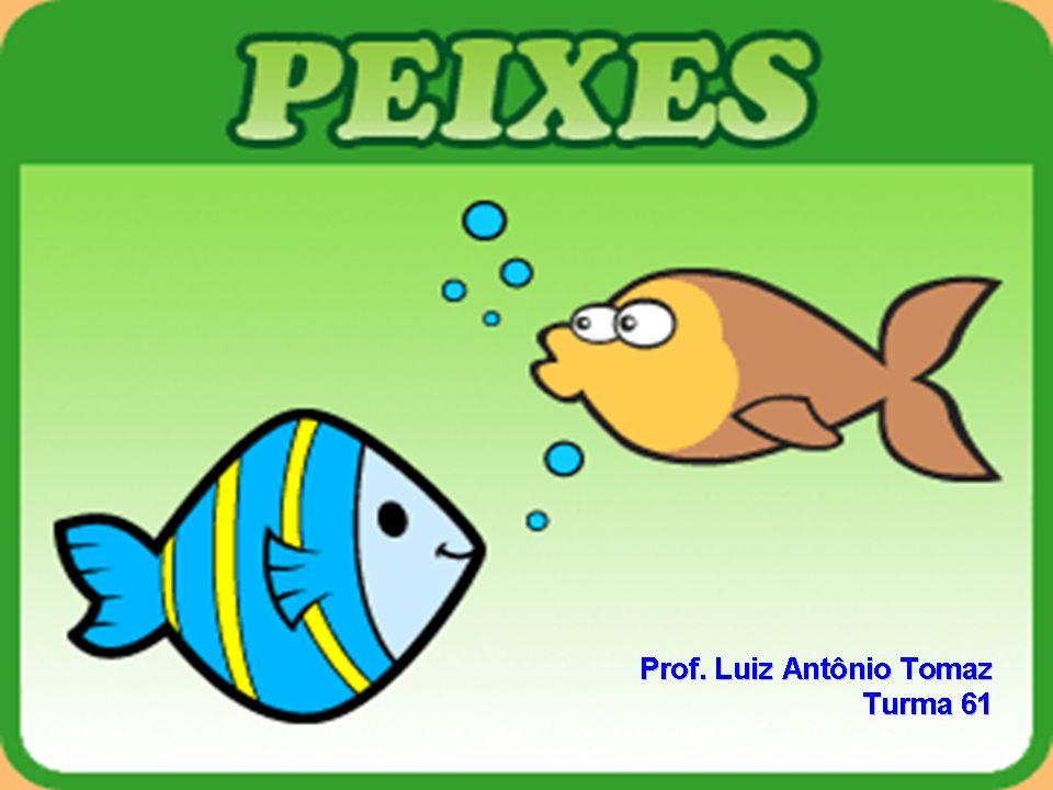 Curiosidades...Piracema é o período de desova dos peixes.