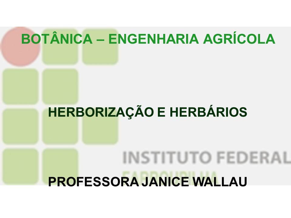 BOTÂNICA – ENGENHARIA AGRÍCOLA HERBORIZAÇÃO E HERBÁRIOS PROFESSORA JANICE WALLAU