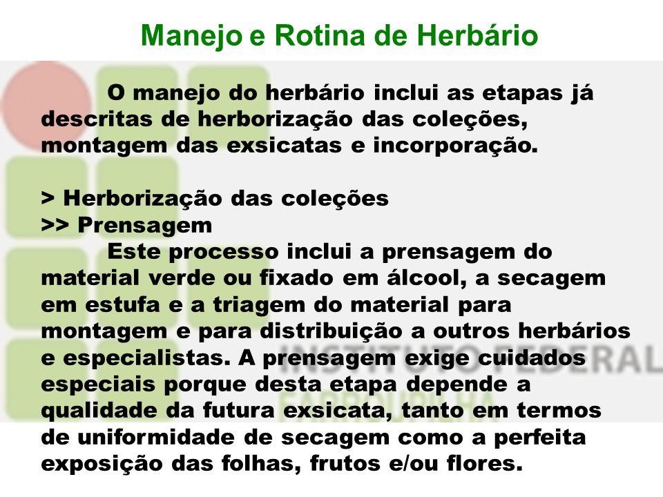 Manejo e Rotina de Herbário O manejo do herbário inclui as etapas já descritas de herborização das coleções, montagem das exsicatas e incorporação. >