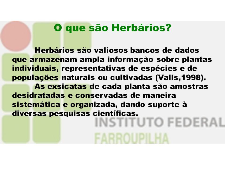 O que são Herbários? Herbários são valiosos bancos de dados que armazenam ampla informação sobre plantas individuais, representativas de espécies e de