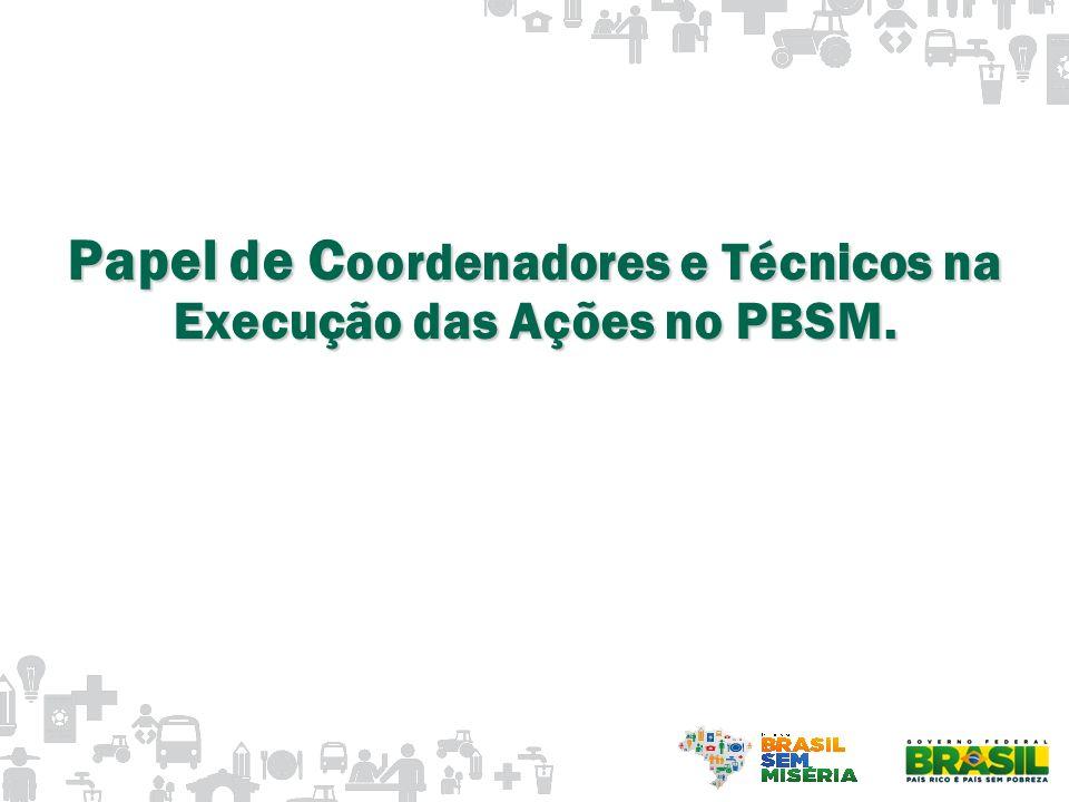 Papel de C oordenadores e Técnicos na Execução das Ações no PBSM.