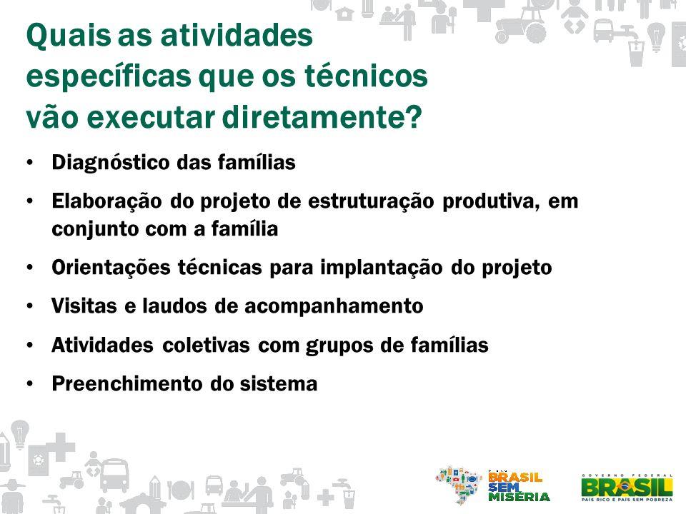 Quais as atividades específicas que os técnicos vão executar diretamente? Diagnóstico das famílias Elaboração do projeto de estruturação produtiva, em