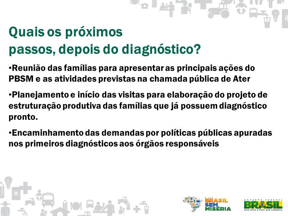 Quais os próximos passos, depois do diagnóstico? Reunião das famílias para apresentar as principais ações do PBSM e as atividades previstas na chamada
