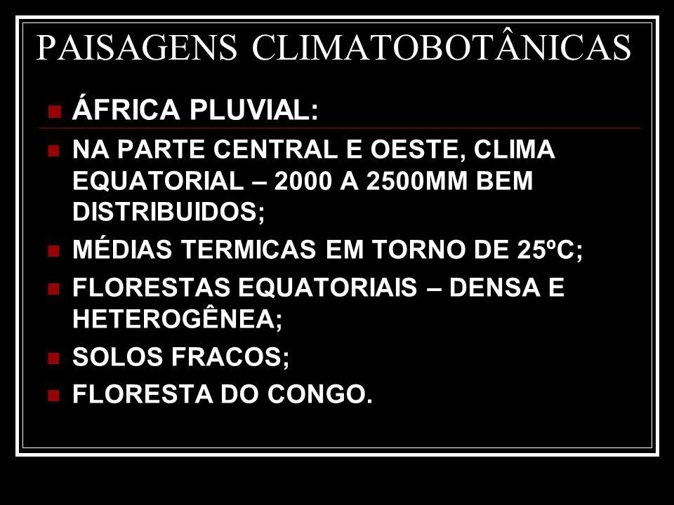 PAISAGENS CLIMATOBOTÂNICAS ÁFRICA PLUVIAL: NA PARTE CENTRAL E OESTE, CLIMA EQUATORIAL – 2000 A 2500MM BEM DISTRIBUIDOS; MÉDIAS TERMICAS EM TORNO DE 25