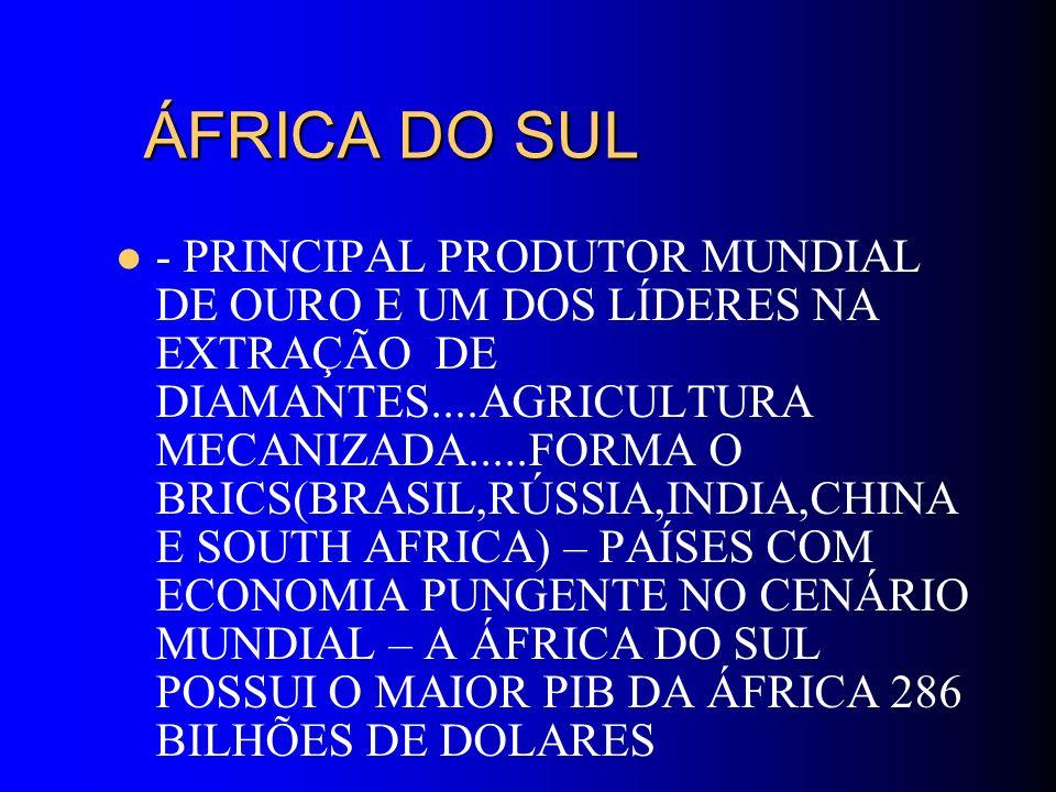 ÁFRICA DO SUL ÁFRICA DO SUL - PRINCIPAL PRODUTOR MUNDIAL DE OURO E UM DOS LÍDERES NA EXTRAÇÃO DE DIAMANTES....AGRICULTURA MECANIZADA.....FORMA O BRICS