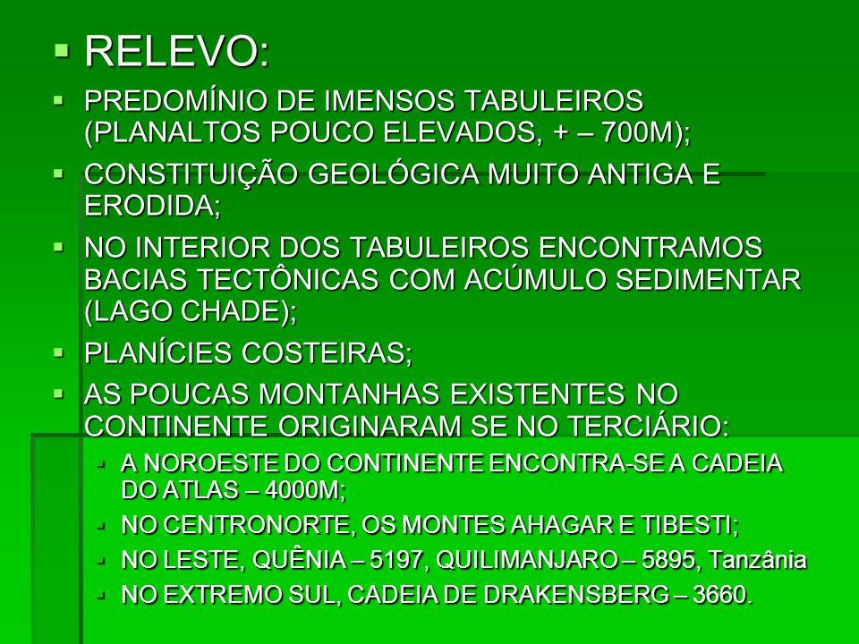 RELEVO: RELEVO: PREDOMÍNIO DE IMENSOS TABULEIROS (PLANALTOS POUCO ELEVADOS, + – 700M); PREDOMÍNIO DE IMENSOS TABULEIROS (PLANALTOS POUCO ELEVADOS, + –