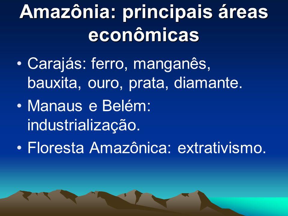 Amazônia: principais áreas econômicas Carajás: ferro, manganês, bauxita, ouro, prata, diamante. Manaus e Belém: industrialização. Floresta Amazônica: