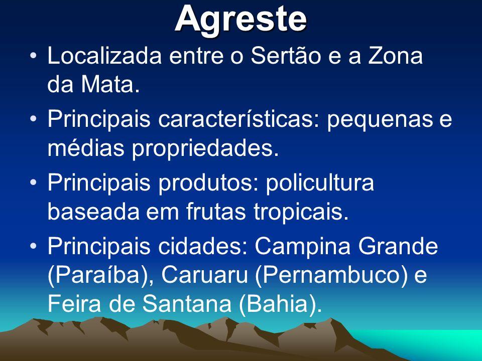 Agreste Localizada entre o Sertão e a Zona da Mata. Principais características: pequenas e médias propriedades. Principais produtos: policultura basea