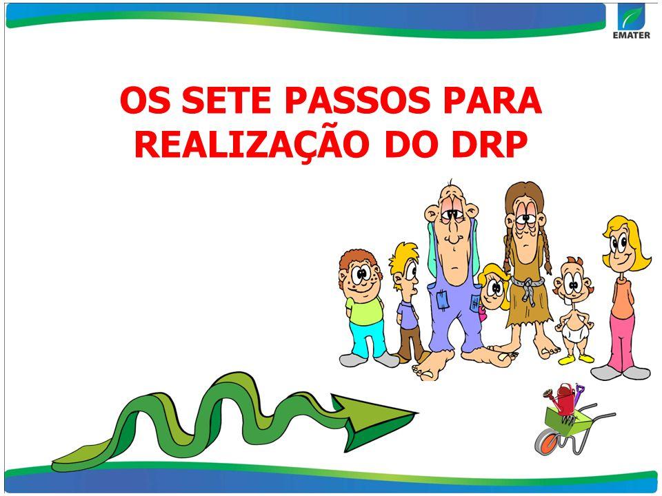 OS SETE PASSOS PARA REALIZAÇÃO DO DRP