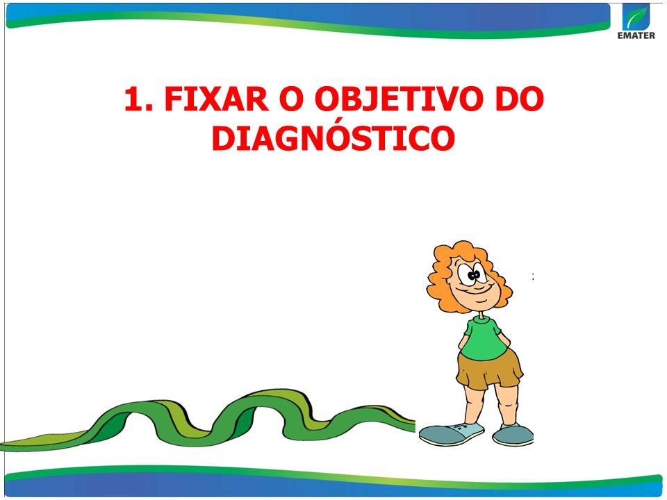 1. FIXAR O OBJETIVO DO DIAGNÓSTICO