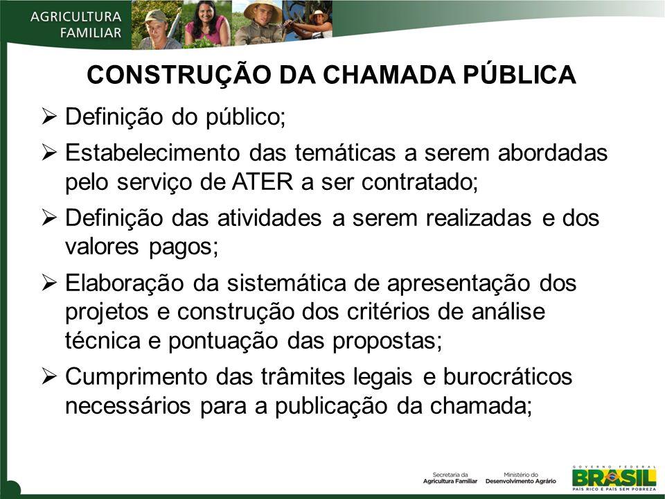 CONSTRUÇÃO DA CHAMADA PÚBLICA Definição do público; Estabelecimento das temáticas a serem abordadas pelo serviço de ATER a ser contratado; Definição d