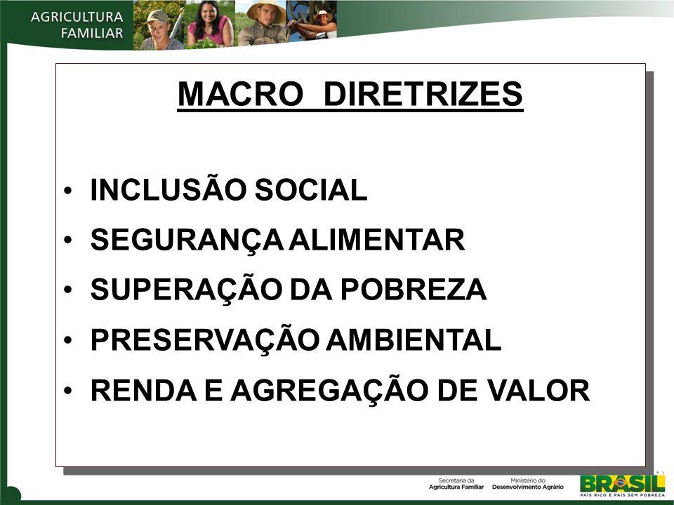 MACRO DIRETRIZES INCLUSÃO SOCIAL SEGURANÇA ALIMENTAR SUPERAÇÃO DA POBREZA PRESERVAÇÃO AMBIENTAL RENDA E AGREGAÇÃO DE VALOR MACRO DIRETRIZES INCLUSÃO S