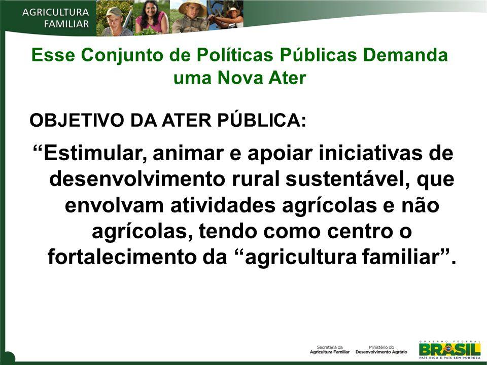 Agricultores familiares atendidos por contratos de ATER no Brasil BRASIL Total: 265.454 233 contratos Norte 32.430 Sudeste 22.141 Nordeste 162.141 Sul 40.564 Centro-Oeste 8.178