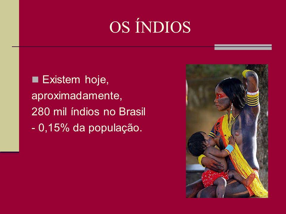 OS ÍNDIOS Os índios passaram por tempos de matança, escravismo, catequização forçada ou mera indiferença das autoridades.