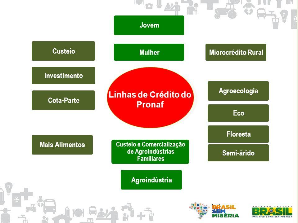 Semi-árido Custeio e Comercialização de Agroindústrias Familiares Cota-ParteAgroindústria Linhas de Crédito do Pronaf Custeio EcoInvestimento Agroecol