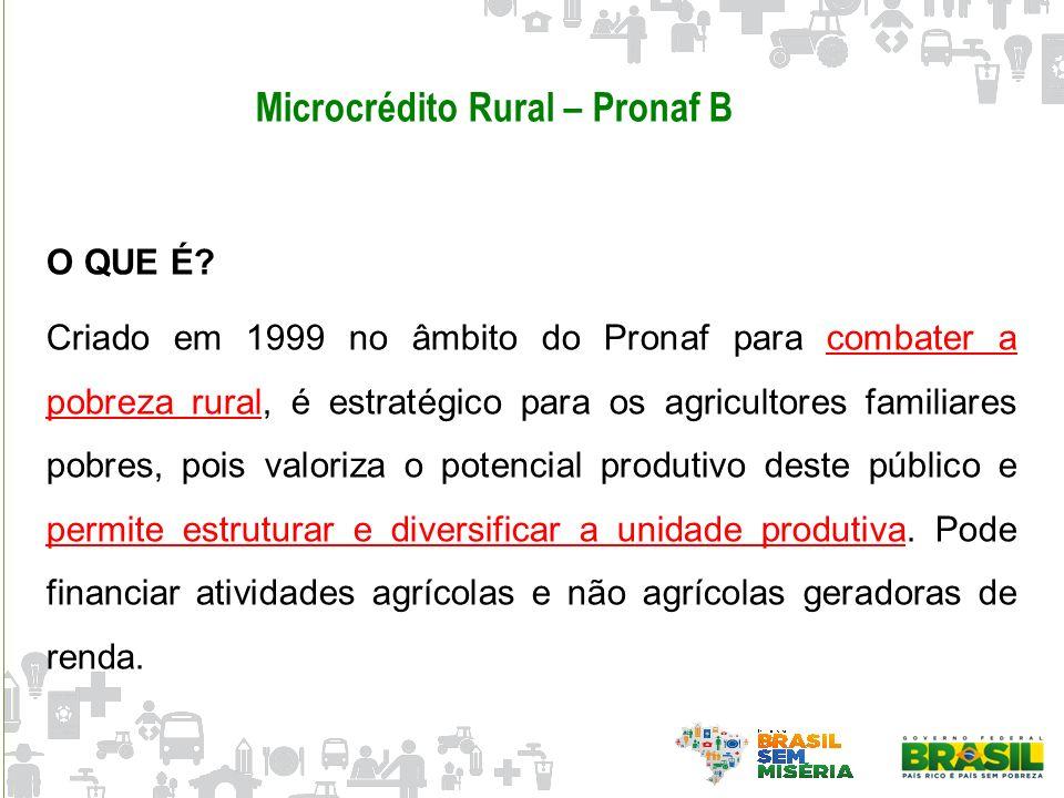 Microcrédito Rural – Pronaf B O QUE É? Criado em 1999 no âmbito do Pronaf para combater a pobreza rural, é estratégico para os agricultores familiares