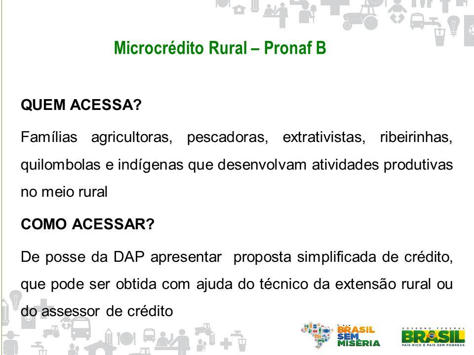 Microcrédito Rural – Pronaf B QUEM ACESSA? Famílias agricultoras, pescadoras, extrativistas, ribeirinhas, quilombolas e indígenas que desenvolvam ativ