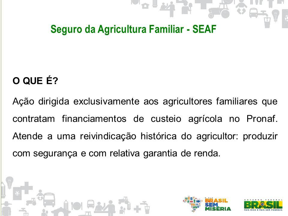 Seguro da Agricultura Familiar - SEAF O QUE É? Ação dirigida exclusivamente aos agricultores familiares que contratam financiamentos de custeio agríco