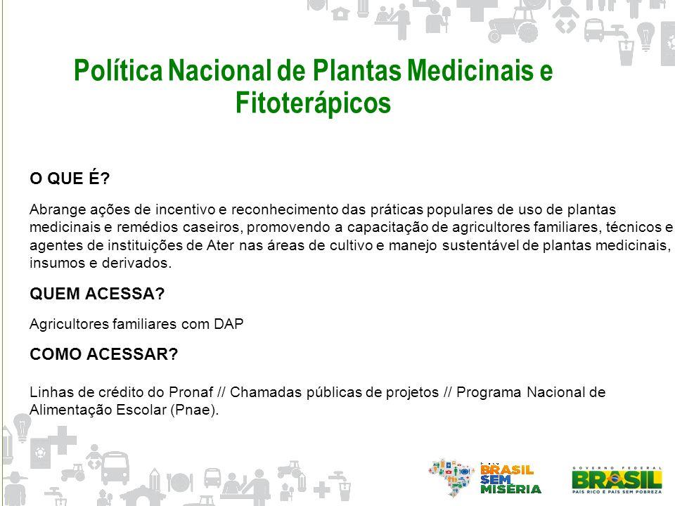 Política Nacional de Plantas Medicinais e Fitoterápicos O QUE É? Abrange ações de incentivo e reconhecimento das práticas populares de uso de plantas