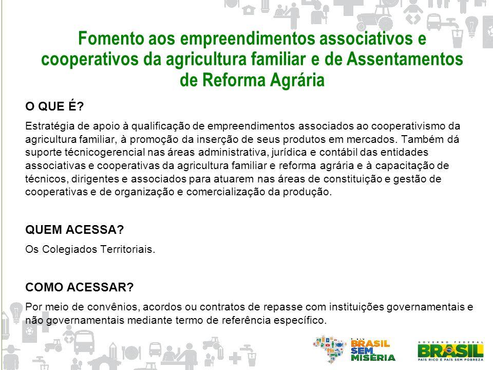 Fomento aos empreendimentos associativos e cooperativos da agricultura familiar e de Assentamentos de Reforma Agrária O QUE É? Estratégia de apoio à q