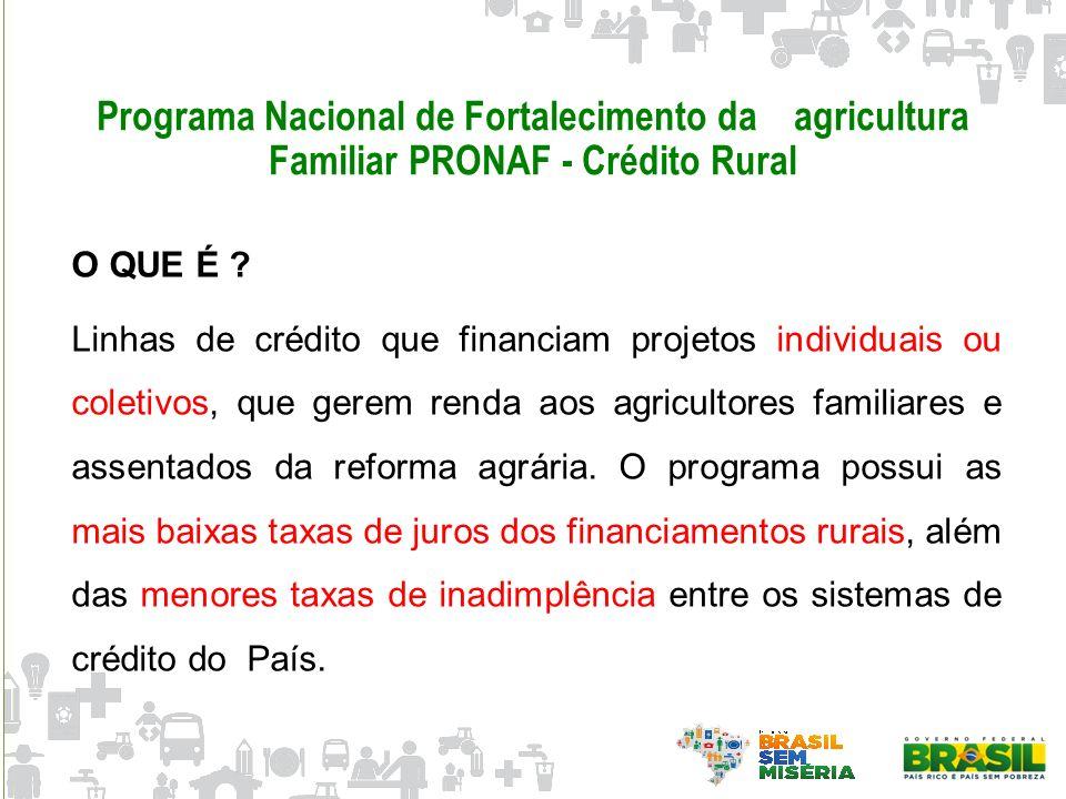 Programa Nacional de Fortalecimento da agricultura Familiar PRONAF - Crédito Rural O QUE É ? Linhas de crédito que financiam projetos individuais ou c