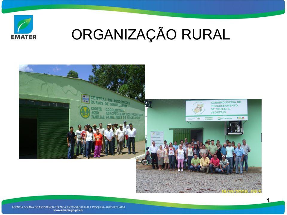ORGRANIZAÇÃO RURAL A Organização Rural deve ser uma das formas de reduzir a extrema atomização dos produtores rurais, particularmente os pequenos e médios, fato que leva-os, a sua cada vez maior marginalização 2