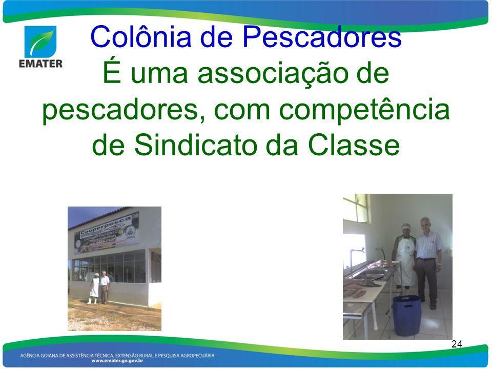 Colônia de Pescadores É uma associação de pescadores, com competência de Sindicato da Classe 24