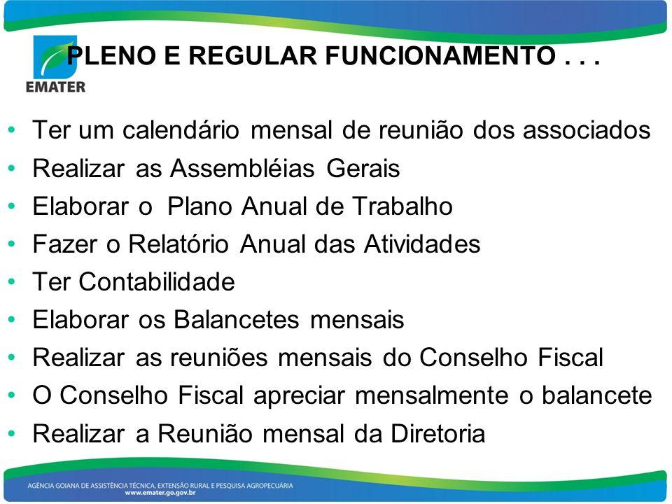PLENO E REGULAR FUNCIONAMENTO... Ter um calendário mensal de reunião dos associados Realizar as Assembléias Gerais Elaborar o Plano Anual de Trabalho