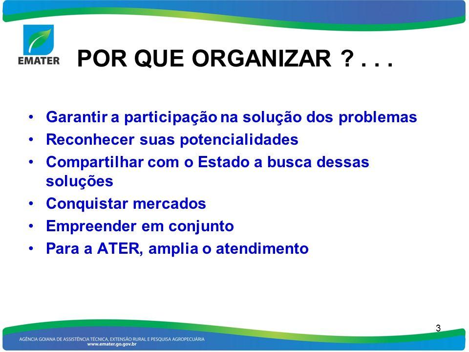POR QUE ORGANIZAR ?... Garantir a participação na solução dos problemas Reconhecer suas potencialidades Compartilhar com o Estado a busca dessas soluç