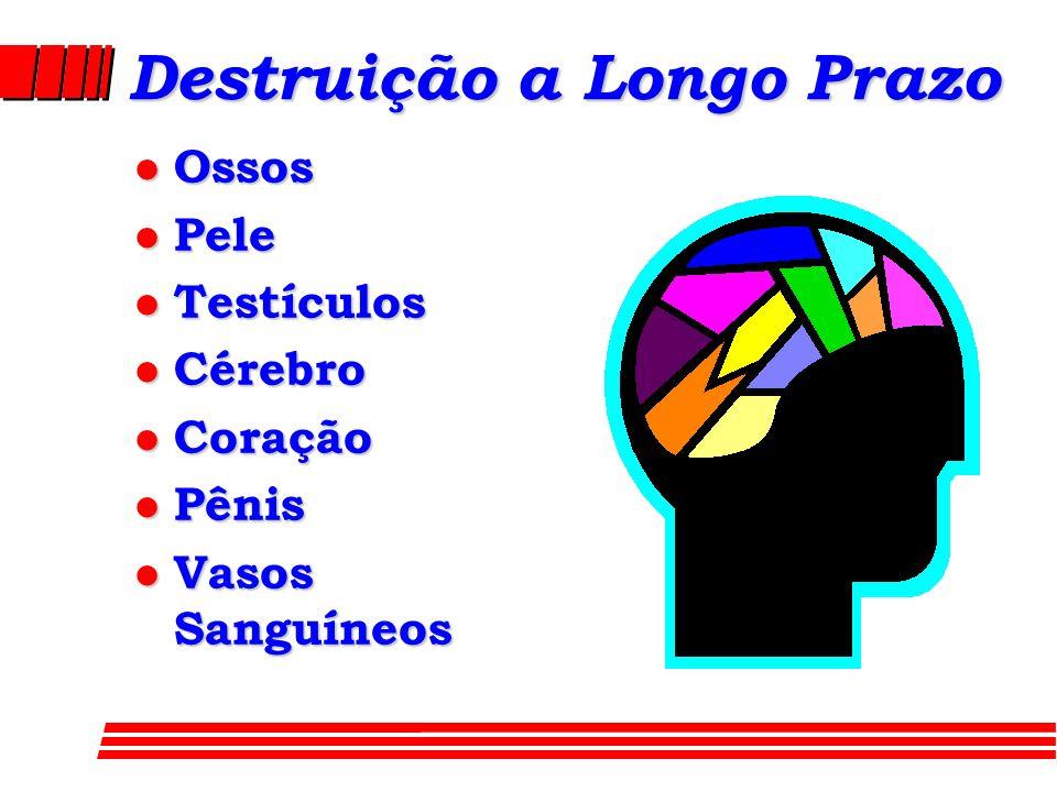 Destruição a Longo Prazo l Ossos l Pele l Testículos l Cérebro l Coração l Pênis l Vasos Sanguíneos
