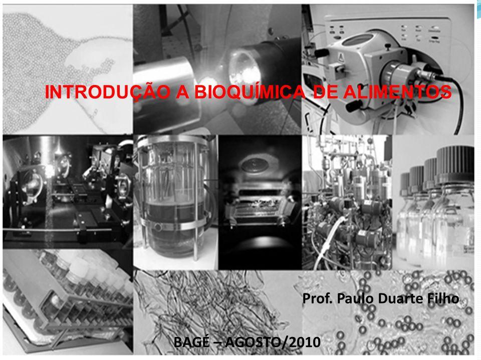 INTRODUÇÃO A BIOQUÍMICA DE ALIMENTOS Prof. Paulo Duarte Filho BAGÉ – AGOSTO/2010