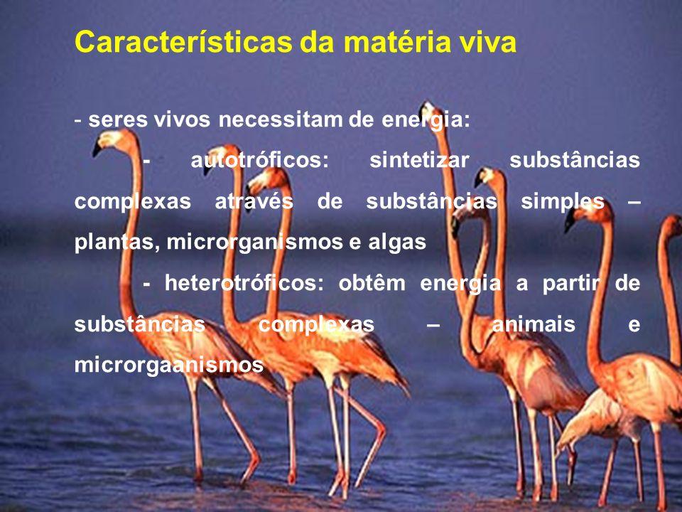 Características da matéria viva - seres vivos necessitam de energia: - autotróficos: sintetizar substâncias complexas através de substâncias simples –