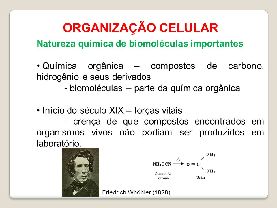 ORGANIZAÇÃO CELULAR Natureza química de biomoléculas importantes Química orgânica – compostos de carbono, hidrogênio e seus derivados - biomoléculas –