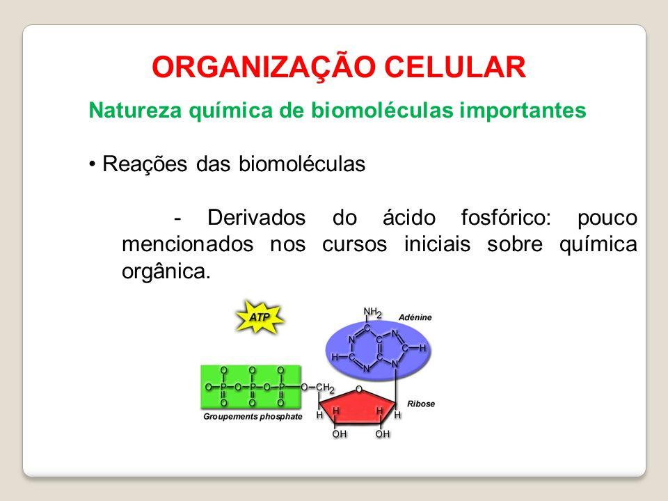 ORGANIZAÇÃO CELULAR Natureza química de biomoléculas importantes Reações das biomoléculas - Derivados do ácido fosfórico: pouco mencionados nos cursos iniciais sobre química orgânica.