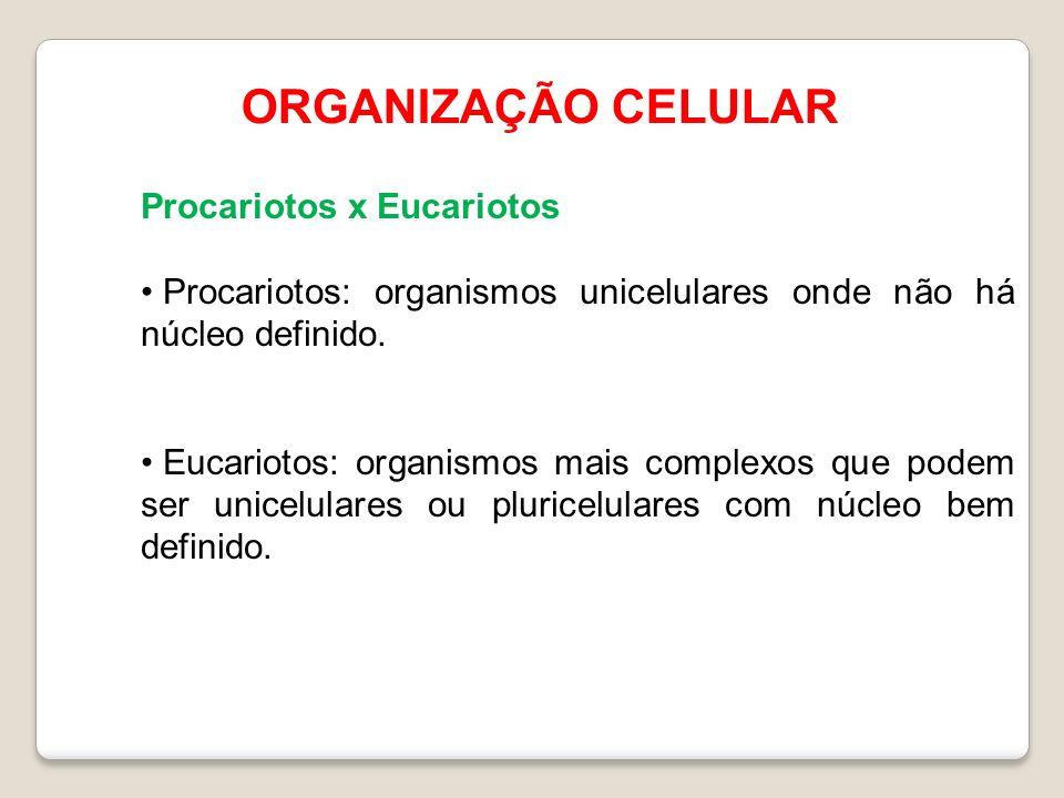 ORGANIZAÇÃO CELULAR Procariotos x Eucariotos Procariotos: organismos unicelulares onde não há núcleo definido. Eucariotos: organismos mais complexos q