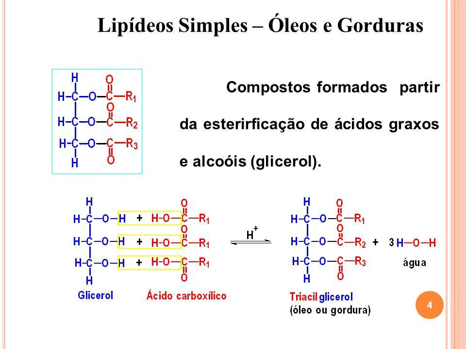 Lipídeos Simples – Óleos e Gorduras 4 Compostos formados partir da esterirficação de ácidos graxos e alcoóis (glicerol).