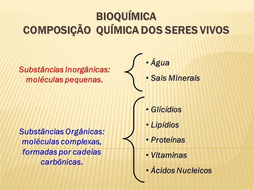 BIOQUÍMICA COMPOSIÇÃO QUÍMICA DOS SERES VIVOS A matéria que forma os seres vivos – matéria orgânica – caracteriza-se pela presença constante de certos elementos químicos, entre eles destacamos: Carbono (C) Hidrogênio (H) Oxigênio (O) Nitrogênio (N) Fósforo (P) Enxofre (S) 98% da massa corporal da maioria dos seres vivos é composta pelos elementos citados; os outros 2% são elementos químicos diversos.