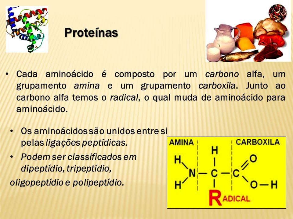 Proteínas Os aminoácidos são unidos entre si pelas ligações peptídicas.
