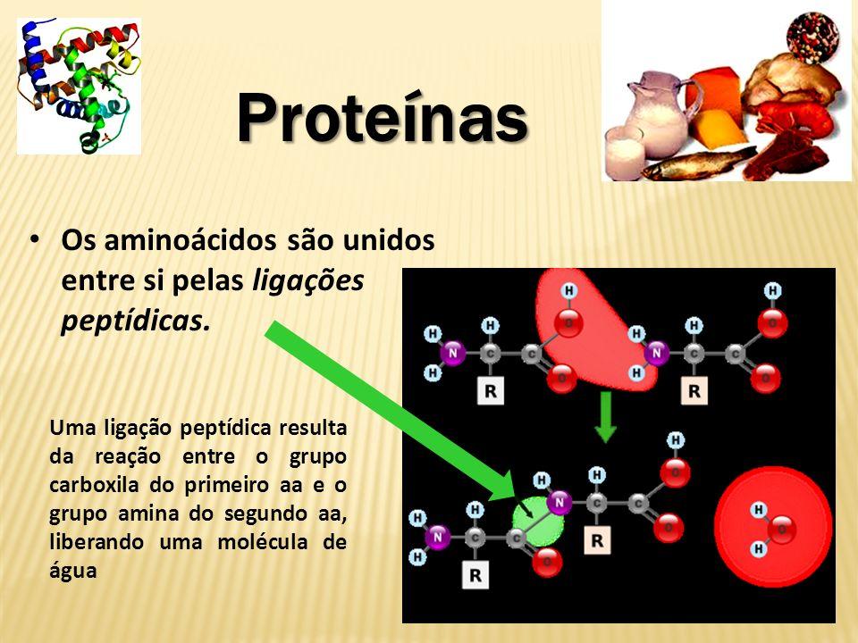 Proteínas Classificação dos aminoácidos: Os aminoácidos NATURAIS são os que um ser vivo pode produzir.