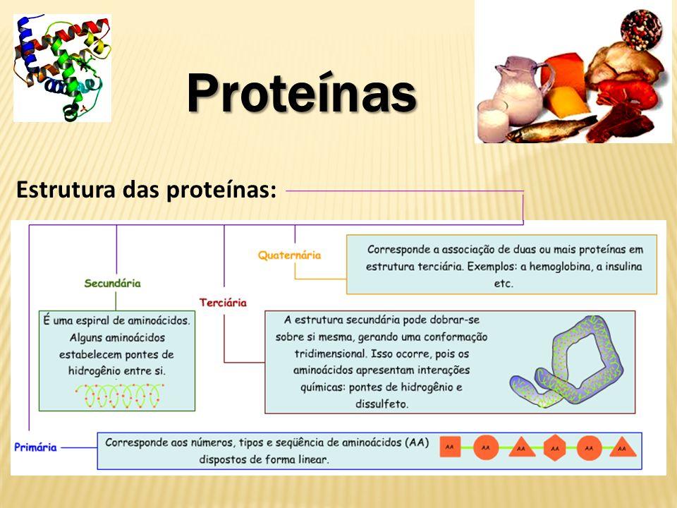 Proteínas do tipo enzimas Aceleram as reações químicas.