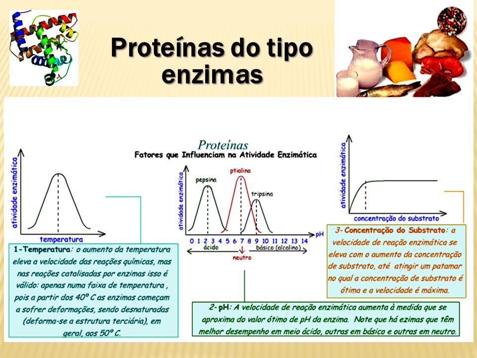 Proteínas - atuam na imunização - Anticorpos defendem o nosso corpo.