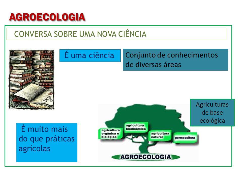 AGROECOLOGIAAGROECOLOGIA Visa a sustentabilidade Autonomia dependência Produtos Conhecimentos Tomadas de decisão Mudanças nas relações com o Meio Ambiente Combate a seca x convivência Cidadania = oportunidades Ética da vida