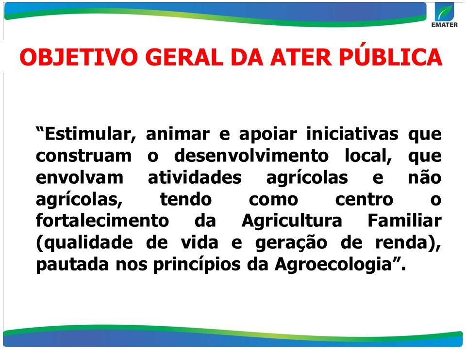 OBJETIVO GERAL DA ATER PÚBLICA Estimular, animar e apoiar iniciativas que construam o desenvolvimento local, que envolvam atividades agrícolas e não a