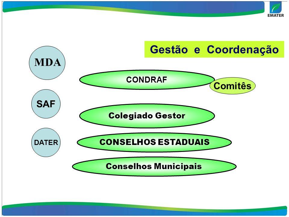 Gestão e Coordenação CONDRAF Comitês Colegiado Gestor MDA SAF DATER CONSELHOS ESTADUAIS Conselhos Municipais