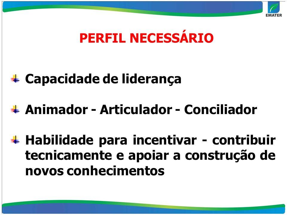 Capacidade de liderança Animador - Articulador - Conciliador Habilidade para incentivar - contribuir tecnicamente e apoiar a construção de novos conhe