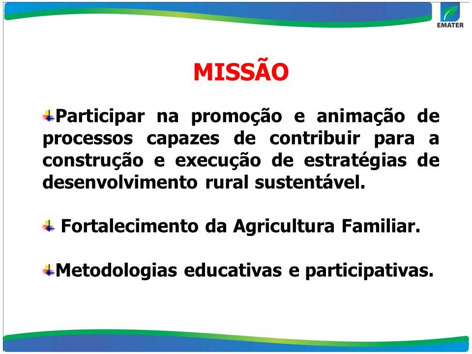 MISSÃO Participar na promoção e animação de processos capazes de contribuir para a construção e execução de estratégias de desenvolvimento rural suste