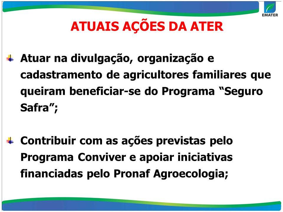Atuar na divulgação, organização e cadastramento de agricultores familiares que queiram beneficiar-se do Programa Seguro Safra; Contribuir com as açõe