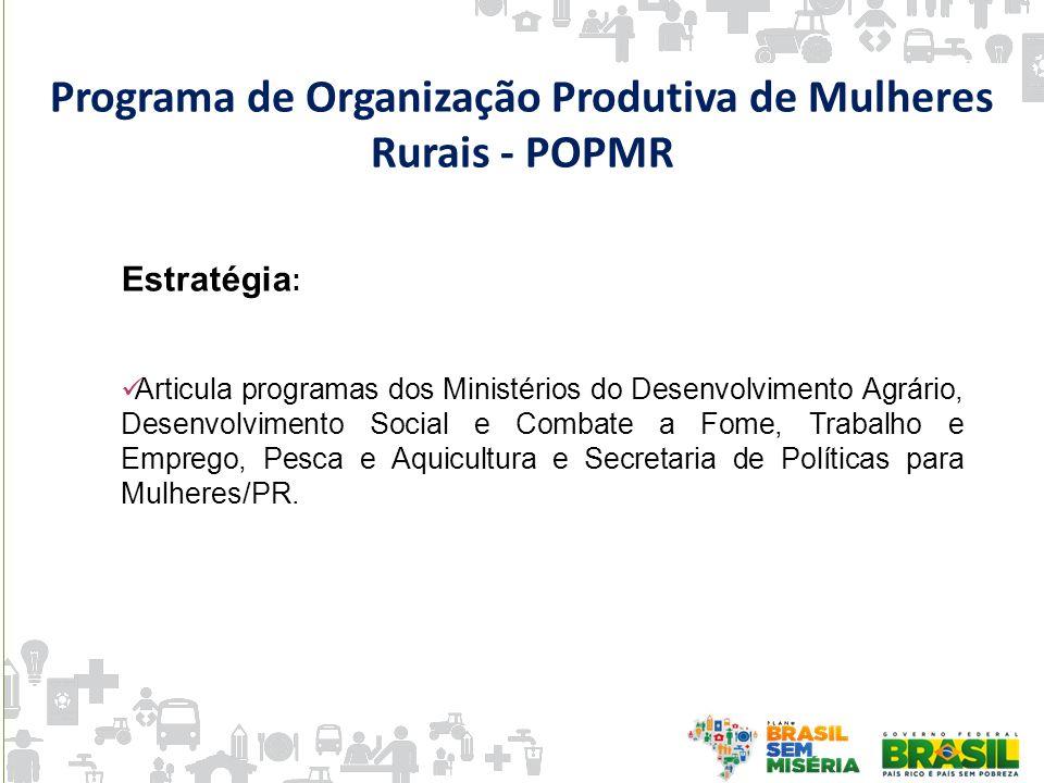 Estratégia : Articula programas dos Ministérios do Desenvolvimento Agrário, Desenvolvimento Social e Combate a Fome, Trabalho e Emprego, Pesca e Aquic
