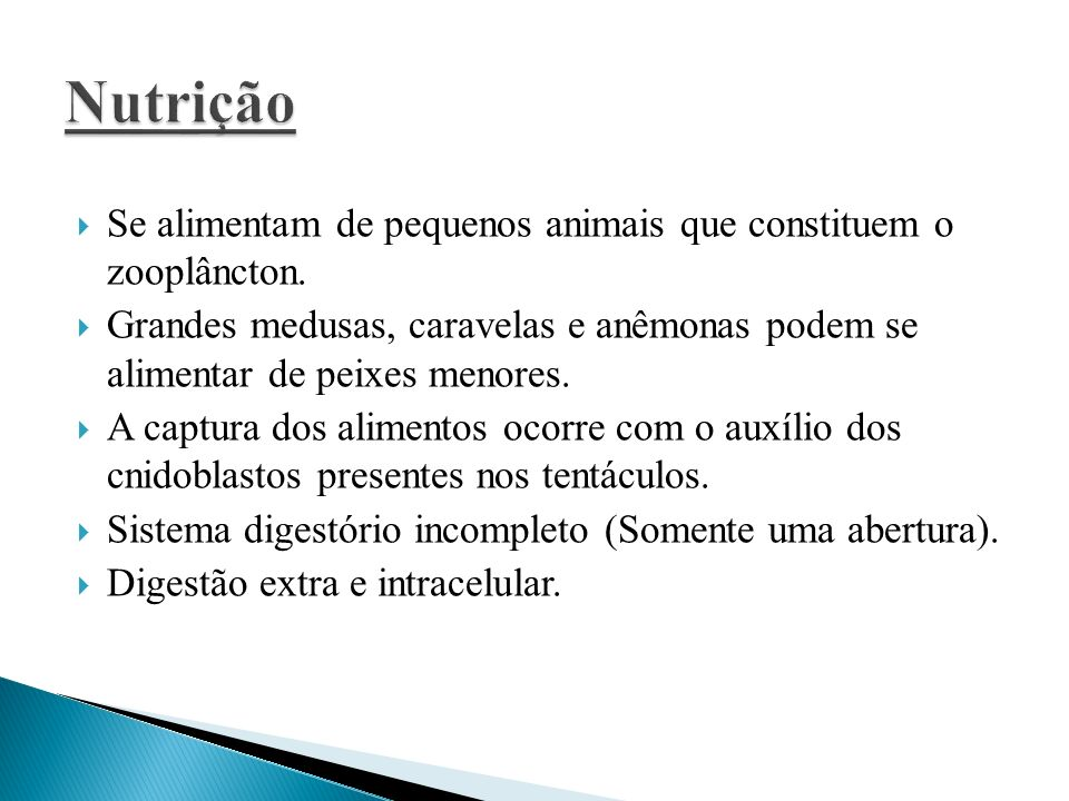 Se alimentam de pequenos animais que constituem o zooplâncton. Grandes medusas, caravelas e anêmonas podem se alimentar de peixes menores. A captura d